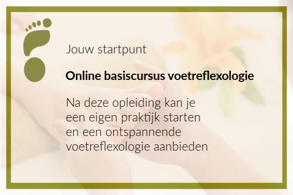 school - online basisopleiding voetreflexologie