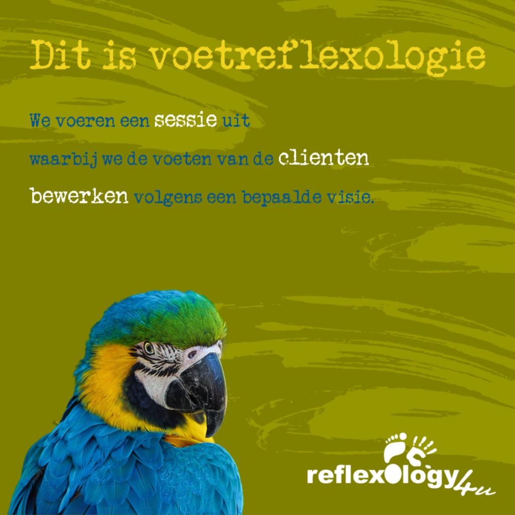 Voetreflexologie definitie