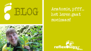 Blog - Anatomie, pfff… het leren gaat moeizaam!