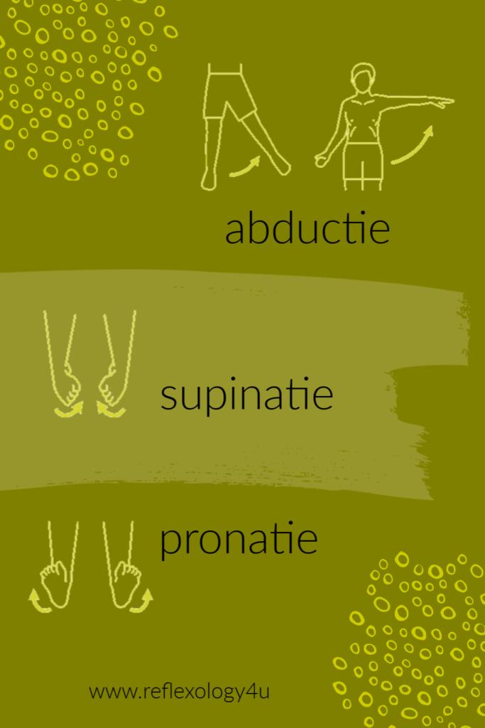 abductie, supinatie, pronatie - anatomie leren