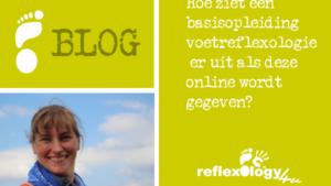 BOLG - Hoe ziet een online cursus er uit
